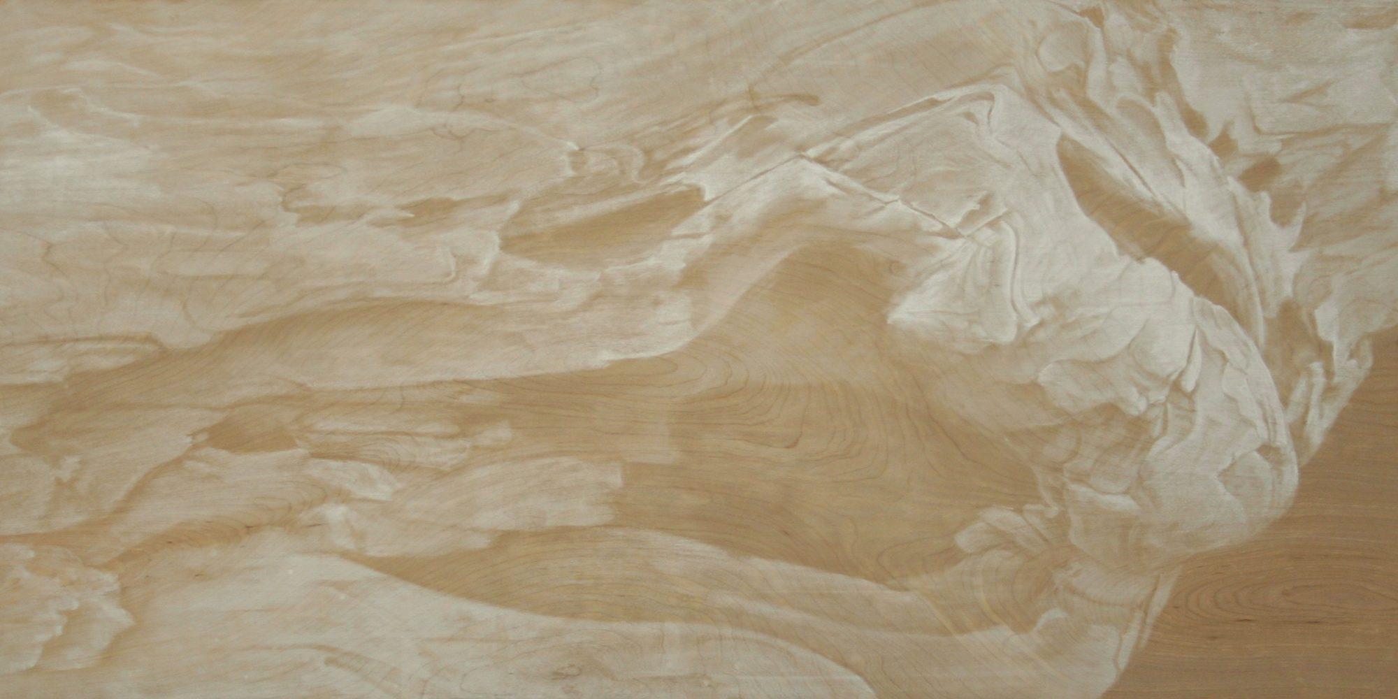 """Pastel on Wood, 24""""x48"""", 2009"""