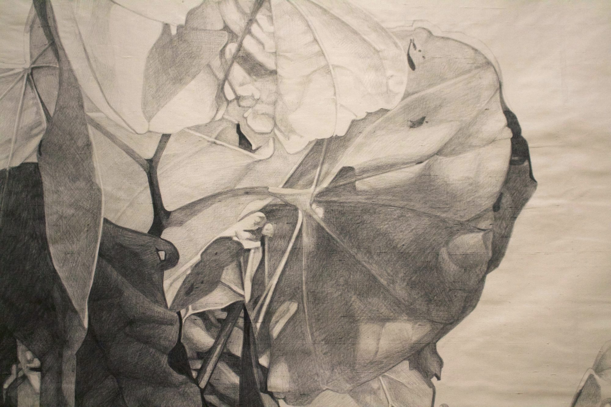 Graphite on Silk, 2016