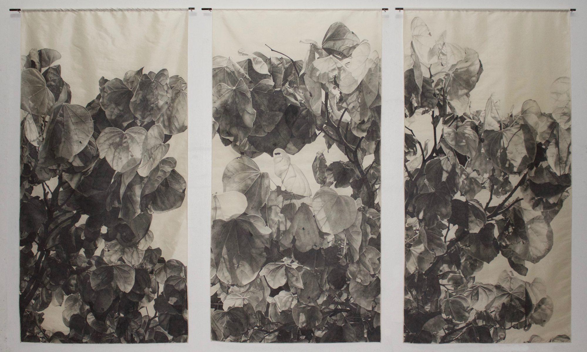 """Graphite on Silk, 80""""x128"""", 2016"""