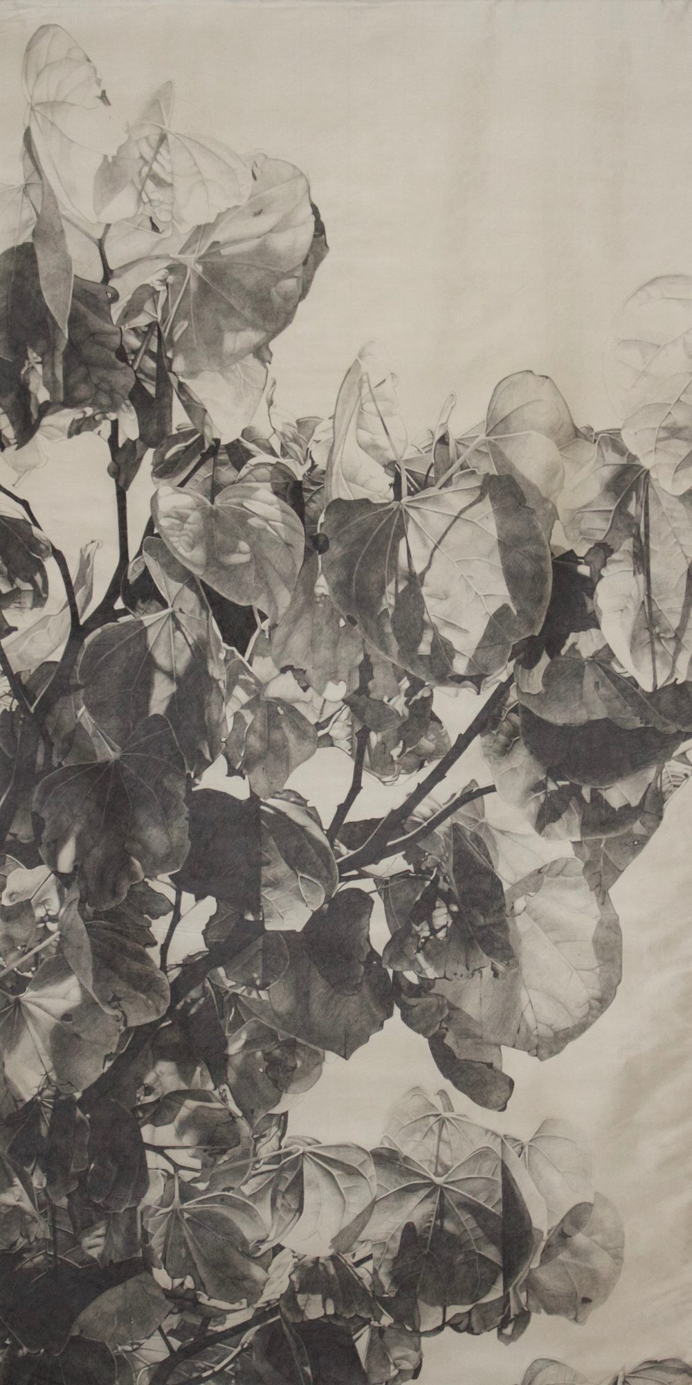 """Graphite on Silk, 80""""x40"""", 2016"""