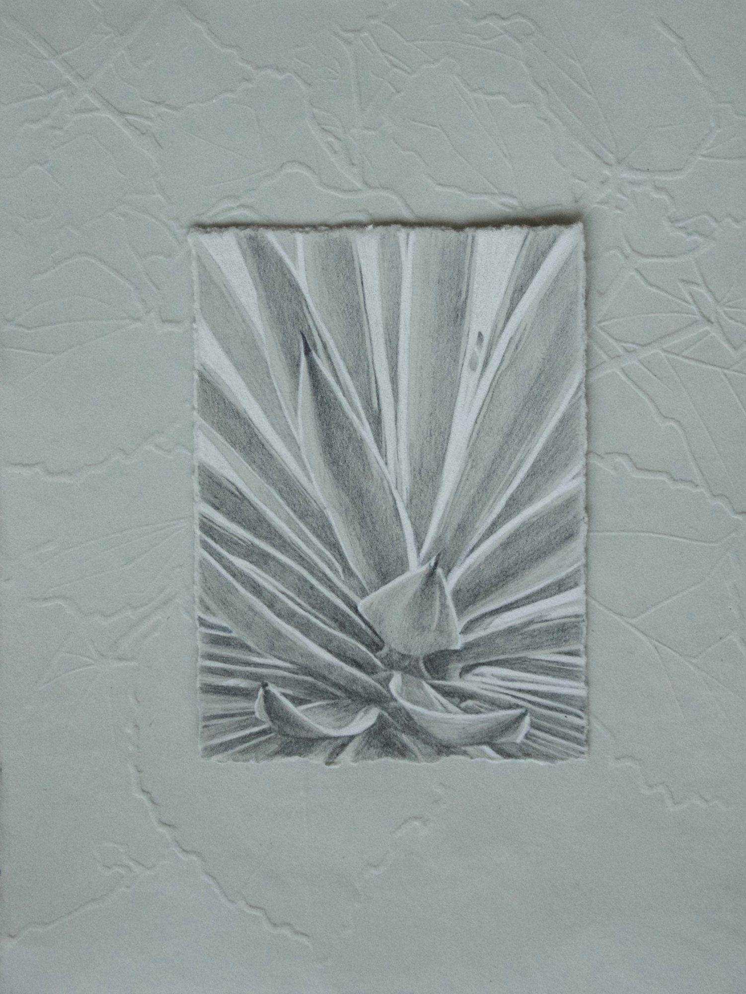 """Embossing and Graphite on Paper, 8""""x6"""", 2016"""